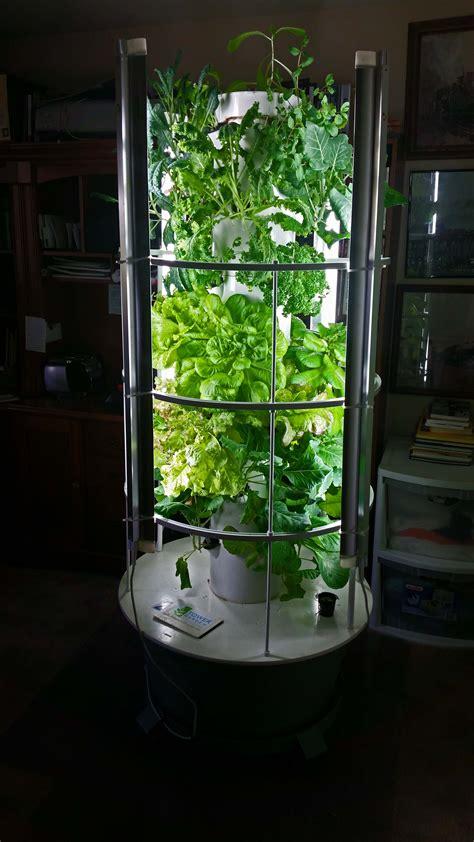 indoor vertical garden tower garden growing plants