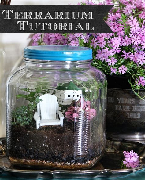 house of hawthornes how to make a terrarium the quick easy way house of