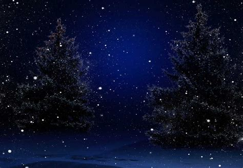 images of christmas night christmas trees at night bg racks