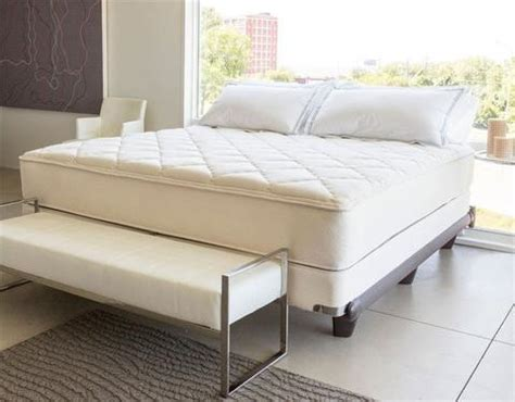 organic adjustable bed base motorized with bluetooth ty furniture