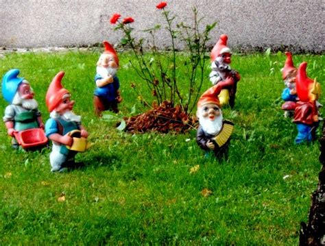 lawn gnome file 7 garden gnomes jpg wikimedia commons