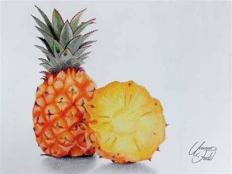 fruit drawings drawing fruits 4 pineapple colored pencils by f a d i