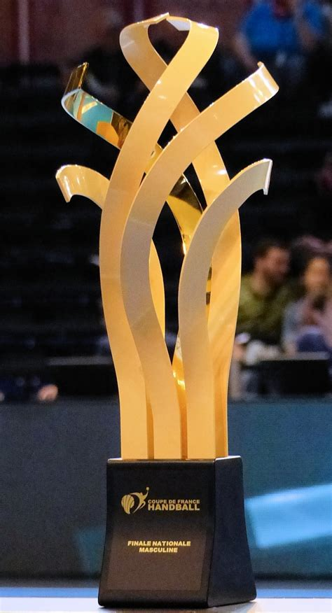 coupe de de handball masculin 2013 2014 wikip 233 dia