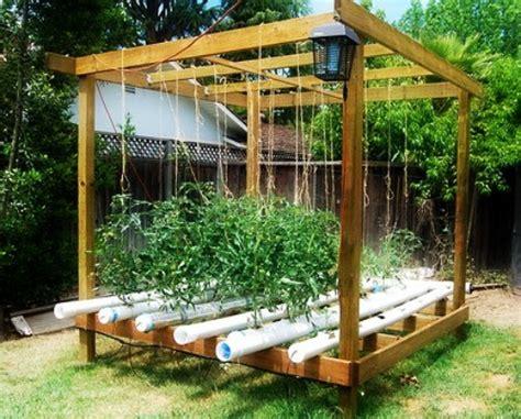 backyard hydroponics 1000 images about hydroponics on pinterest