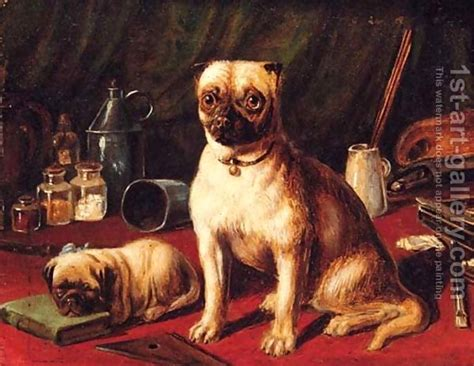 retro mops pug for sale 292 best mops images on pug pug dogs and pugs