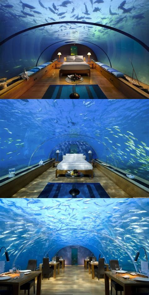 amazing snaps   suites  restaurants