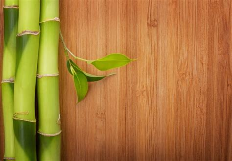 Clean Bamboo Floors by How To Clean Bamboo Floors Contractor Quotes