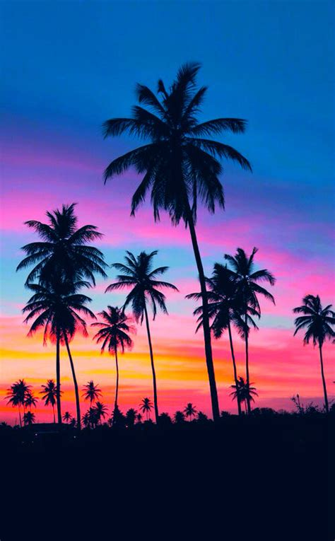 imagenes nike movibles tropical sunset pictures photos and images for facebook