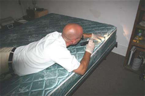 bed bug inspector avoiding bed bugs