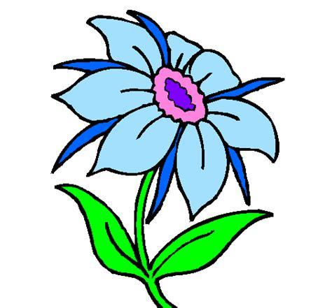 fiore disegno disegno fiore selvatico colorato da utente non registrato