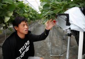 Mba Background Check Japan S Farmers Pin Hopes On Technology To Revitalize Agricultural Industry