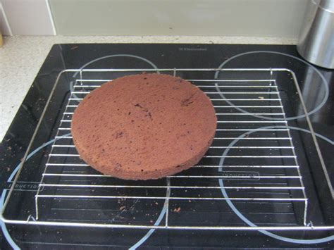 Can You Put A Cooling Rack In The Oven by Baking A Hello World Cake Products Of Mike S Mind