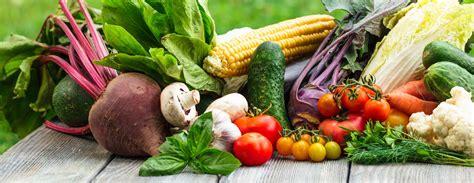 menu diet karbo  mengurangi berat badan