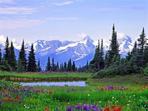 imagenes de jardines maravillosos jardines y paisajes con flores im 225 genes taringa