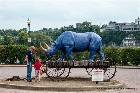 backyard play of chattanooga backyard play of chattanooga 209 best images about