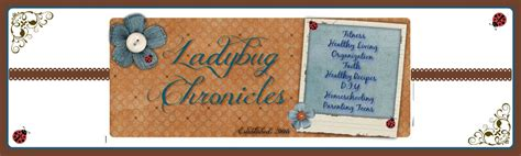 troubled waters montana rescue books ladybug chronicles