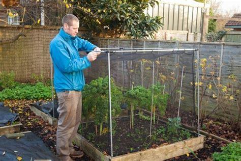 Elstern Vertreiben Im Garten by Elsternest Im Garten So K 246 Nnen Sie Effektiv Die Elster