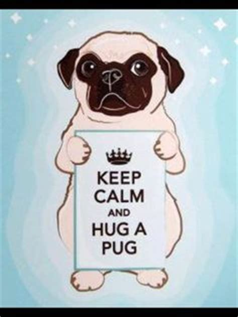 keeping pugs 1000 images about keep calm and on keep calm ask siri and cavy