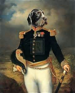 thierry poncelet military humour dog in uniform print ebay