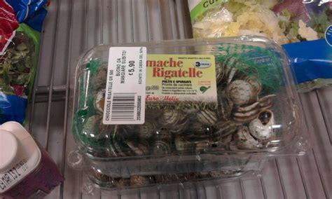 cucinare lumache surgelate supermercati vendono chiocchiole lumache vive think