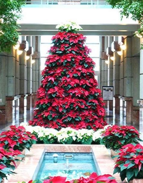 beautiful red flowers christmas tree with red poinsettias