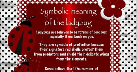 symbolizes meaning symbolic meaning of the ladybug jewels art creation