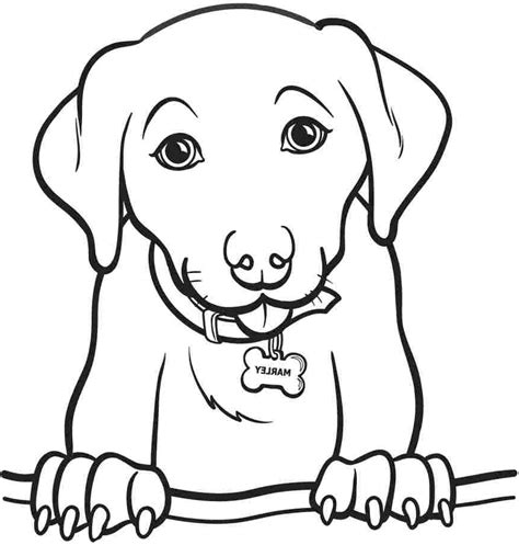 cool coloring pages of dogs free dog pages for adults coloring pages