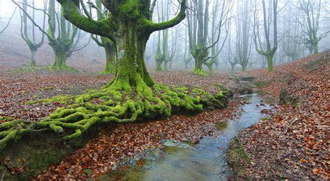 imagenes de paisajes naturales impresionantes banco de im 225 genes para ver disfrutar y compartir