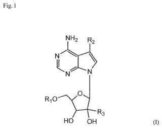j carbohydrates nucleosides nucleotides nuevos nucle 243 sidos de 7 desazapurina para usos terap 233 uticos