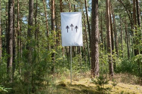 Self owning forest takes pride of place in exhibition