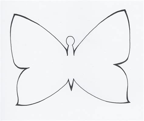 drawing template black and white butterfly outline easter template