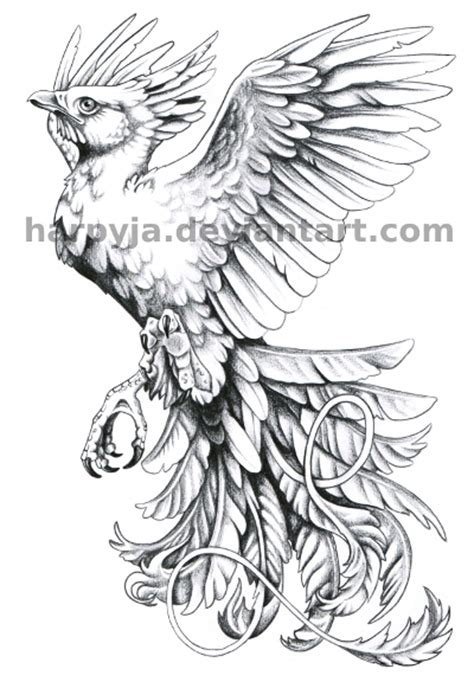 Fawkes The Phoenix Coloring Pages Coloring Pages Fawkes Colouring Pages