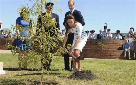 stipendio giardiniere william e kate cercano un giardiniere lo stipendio