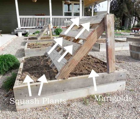 Growing Vegetables In Backyard 30 Raised Garden Bed Ideas Hative