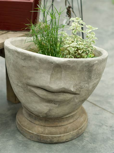plants pottery grass farm garden accents grass farm