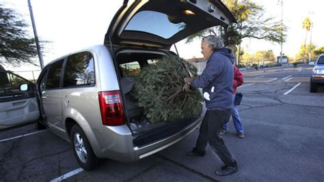 9 tucson locations to recycle your christmas tree local