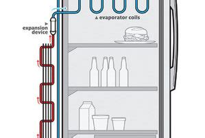 how refrigerator works diagram how does a refrigerator work real simple