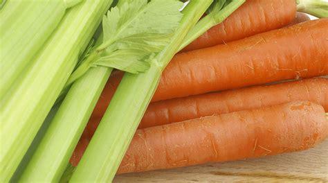 carote e sedano ricetta sedano e carote sotto aceto giornale cibo