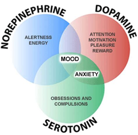 mood l for depression natural mood enhancers daily stress mood support