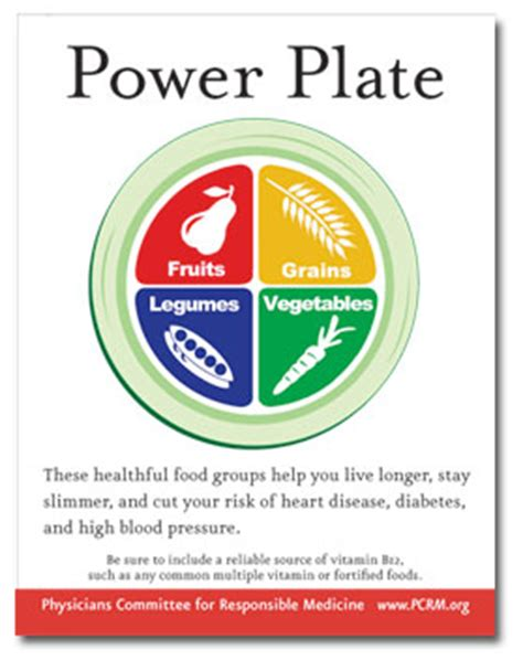 power plates 100 nutritionally balanced one dish vegan meals books vegan diets improve thyroid function the physicians