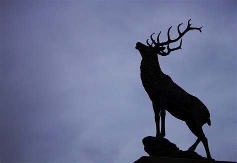 stag rubber st stag silhouette www pixshark images galleries with
