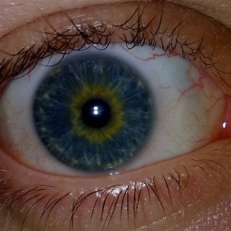 yellow eye color show your what eye color do you guys