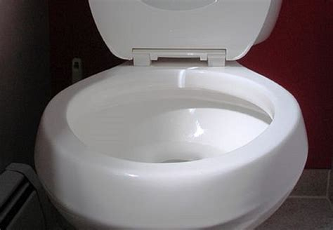 notts toilets outshine competition  loo   year