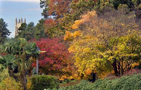 fall garden nc duke gardens learning inspiration and enjoyment