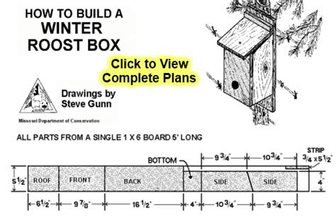 easy free winter bird house plans to provide a winter bird