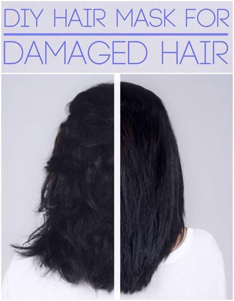 what is the best shoo for dry hair 2013 diy dry hair shoo best 25 egg yolk hair ideas on pinterest