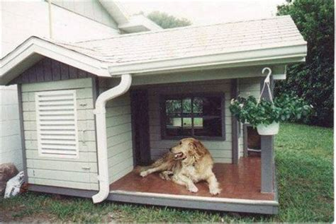 cool dog houses for sale 15 dog houses that even dog owners cannot say no fallinpets