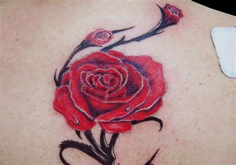 tattoo pictures rose buds rose buds tattoo tats pinterest
