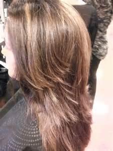 partial highlights on brown hair partial highlights dark brown hairs