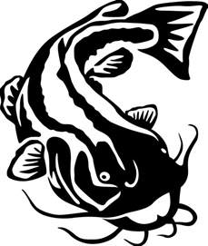 catfish drawing free download clip art free clip art